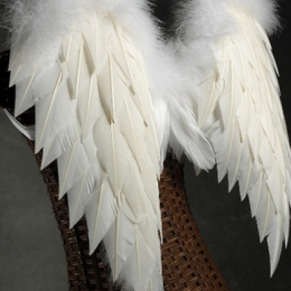 feather-wings-27-x-20-white-feathers-with-marabou-3_260